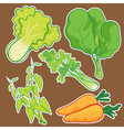 cute Vegetable set vector image