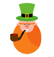 leprechaun with Red Beard Portrait of angry vector image