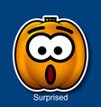 Surprised vector image