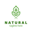 natural product logo design template green leaf vector image