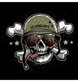 Skull in sunglasses and a military helmet vector image