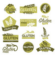 gluten free healthy dietetic product icons vector image