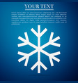 Snowflake flat icon on blue background vector image
