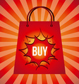 Sale and Shopping design vector image