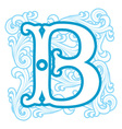 winter vintage letter B vector image vector image