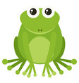 green frog sitting on white background vector image