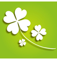 decorative clover vector image vector image