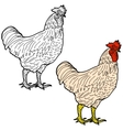 Symbol of New Year 2017 and Christmas Red Rooster vector image vector image