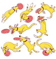 dog frisbi sport set doodle cute pets catching vector image vector image