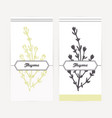 hand drawn thyme in outline and silhouette style vector image