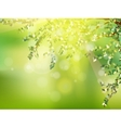 Fresh green leaves on natural EPS 10 vector image