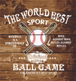baseball the world sport vector image vector image