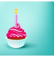 cake birthday party vector image
