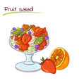 fresh fruit salad vector image