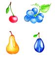 Set of watercolor fruits vector image