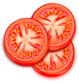 A slice of tomato vector image