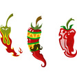 set of three different chili peppers vector image