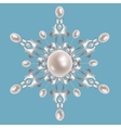 Silver brooch with pearls vector image