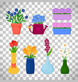 spring flowers in pots set vector image