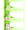 Banners with green bamboo vector image vector image