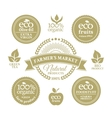 Collection of eco badges vector image