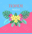 tropical postcard summer background with vector image