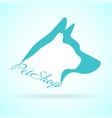 Image of pets design on background petshop vector image