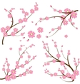 Japanese branch vector image