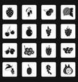 berries icons set squares vector image