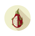 Pitaya flat icon Tropical dragon fruit vector image