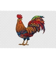 Red rooster the symbol of 2017 vector image