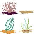 Algae seeweed set vector image vector image