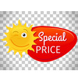 summer sale label smiling sun vector image