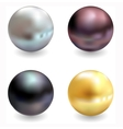 Beautiful pearls realistic vector image