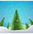 Christmas Forest with snowfall and drifts concept vector image