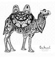 Patterned camel vector image