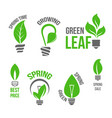 isolated green light bulb spring leaf icion vector image