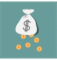 Dollar coins falling out of the bag Success concep vector image vector image
