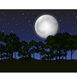 Scene with fullmoon at night vector image vector image