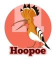 ABC Cartoon Hoopoe vector image