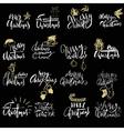 Merry Christmas handwritten lettering Typographic vector image