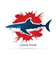stop kill shark vector image