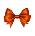 Orange Satin Gift Bow Isolated White vector image