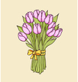Floral background with pink tulips vector image