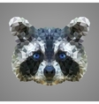 Raccoon low poly portrait vector image vector image