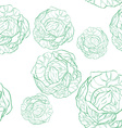 cabbage pattern vector image
