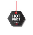 hot price tag isolated black friday logo design vector image