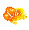 Autumn Big Sale lettering on watercolor stain vector image