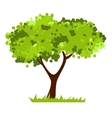 Stylized tree isolated on white background vector image