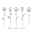 Roses Sketch on white background vector image vector image